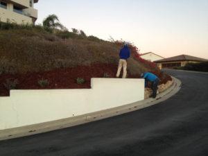 Lawn care agency in santa barbara-sbevolutionlandscape