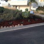 Lawn care agency in santa Barbara-SB Evolution Landscape