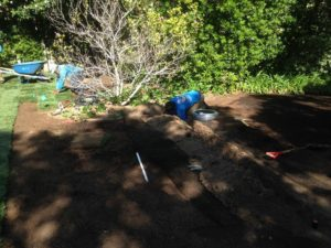 Sods landscaping-SB Evolution Landscape
