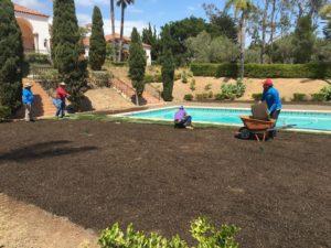 Sods Installation in Montecito-SB Evolution Landscape