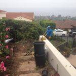 Garden Care Contractor-SB Evolution Landscape