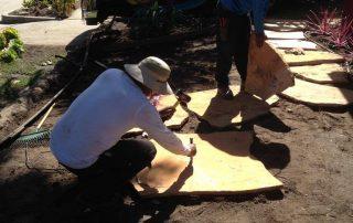 Flagstone Installation in Santa Barbara-SB Evolution Landscape