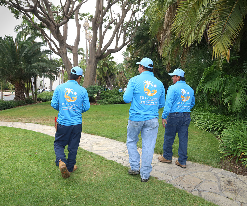About SB Evolution Landscapes | Landscapers Santa Barbara