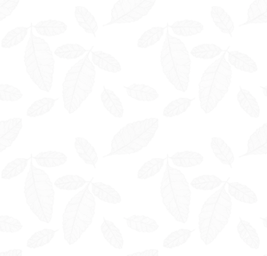 leaf bg