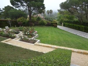 Gardener Bi weekly Maintenance SB Evolution Landscape Clients garden
