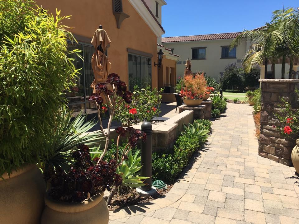 Mulch Materials – Your Garden Canvas