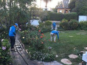Happy Gardener Santa Barbara