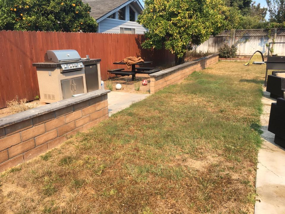 Controlling weeds | Gardeners Santa Barbara