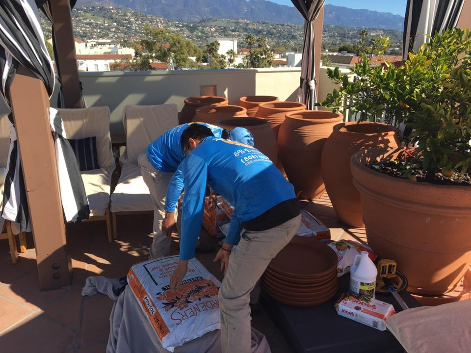 Installation of Greek pots | Landscapers Santa Barbara