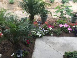 Gardener Santa Barbara-SB Evolution Landscape