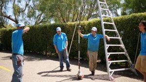 Santa Barbara Gardener Services