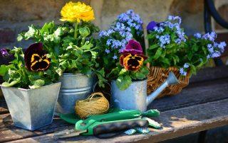 Gardeners Flowers Ideas