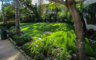 Artificial grass is the new green. Practically no maintenance and zero water.