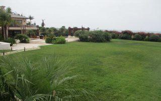 Lawn Santa Barbara